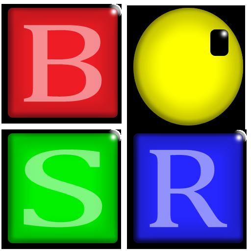 BSR Screen Recorder indir