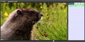 Ace Media Player Ekran Görüntüsü