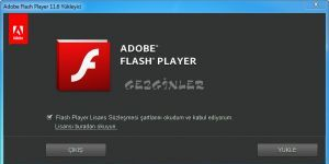 Adobe Flash Player Internet Explorer Ekran Görüntüsü
