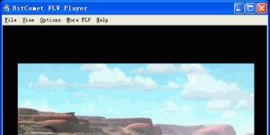 BitComet FLV Player Ekran Görüntüsü