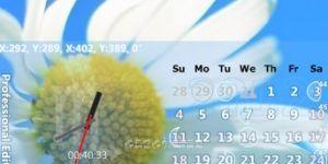 Capture .NET Ekran Görüntüsü