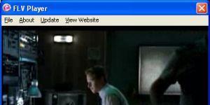 ClipsID FLV Player Ekran Görüntüsü