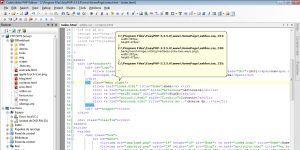 CodeLobster PHP Edition Ekran Görüntüsü