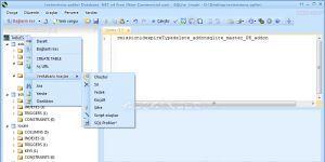 Database .NET Ekran Görüntüsü