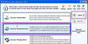 DiskGetor Data Recovery Ekran Görüntüsü