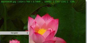 FastStone MaxView Ekran Görüntüsü