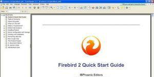 Firebird Ekran Görüntüsü