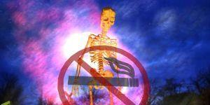 Free Anti-Smoking Screensaver Ekran Görüntüsü