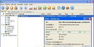 Free Download Manager Ekran G�r�nt�s�