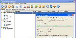 Free Download Manager Ekran Görüntüsü