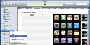 iTunes Ekran Görüntüsü