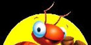 Kar�nca �lk��retim De�erlendirme Program� Ekran G�r�nt�s�
