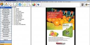 MacroSoft MacEx Yaş Meyve Sebze Paketleme Otomasyonu Ekran Görüntüsü