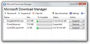 Microsoft Download Manager Ekran Görüntüsü