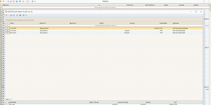 NetBakiye Cari Takip Programı Ekran Görüntüsü