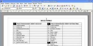 Apache OpenOffice Ekran Görüntüsü