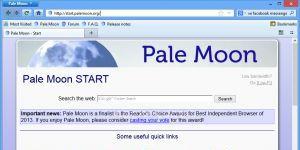 Pale Moon Ekran Görüntüsü