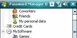 Password Manager XP Ekran Görüntüsü