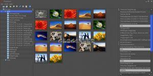 PhotoGrok Ekran Görüntüsü