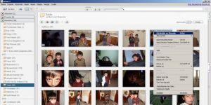 Picasa Ekran Görüntüsü