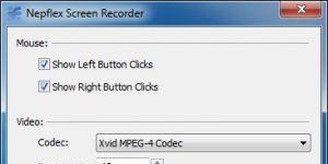 Rylstim Screen Recorder Ekran Görüntüsü
