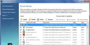 Synei Startup Manager Ekran Görüntüsü