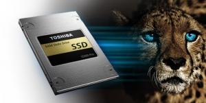 Toshiba Q300 SSD Storage Utility Ekran Görüntüsü