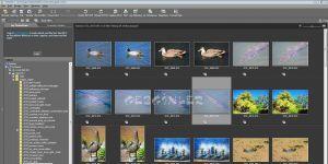 ViewNX 2 Ekran Görüntüsü