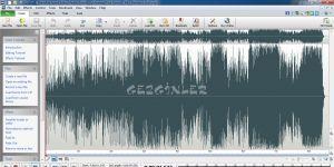 WavePad Audio Editor Ekran Görüntüsü