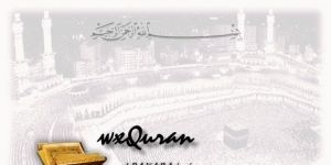 wxQuran Ekran Görüntüsü