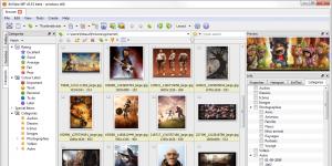 XnViewMP Ekran Görüntüsü