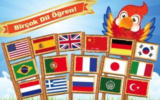 Dil Öğrenme Kılavuzu Resimleri