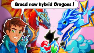 Dragon Story Resimleri