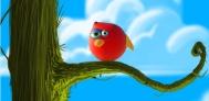 Bird Ball indir