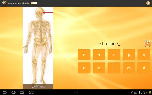 İspanyolca Öğrenme 6000 Kelime Resimleri
