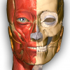 Android Anatomy Learning - 3D Atlas Resim