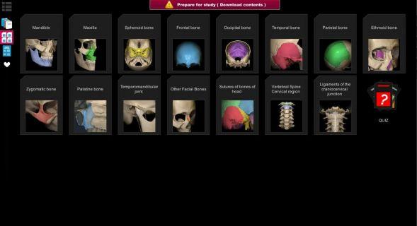Anatomy Learning - 3D Atlas Resimleri
