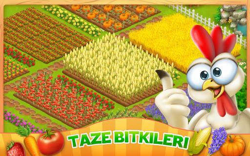 Let's Farm Resimleri
