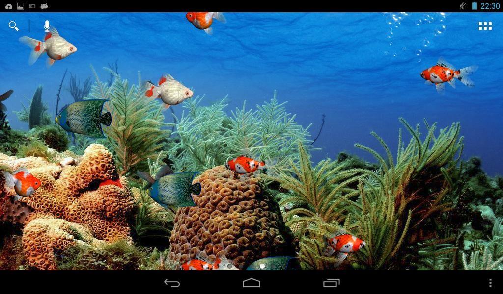 3d fish aquarium live wallpaper apk