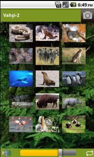 Hayvan Sesleri Resimleri