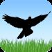 Kuş Sesleri Android