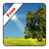 Android True Weather LWP Free Resim