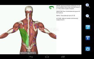 Visual Anatomy Free Resimleri