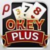 iPhone ve iPad Okey Plus Resim