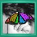 A+ Color Splash FX Free iOS