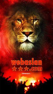 WebAslan Resimleri