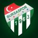 Bursaspor iOS