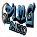 Pimgradio iOS