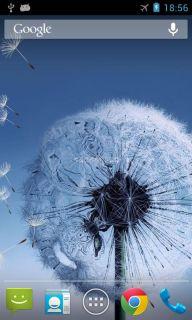 Galaxy S3 Dandelion LWP Resimleri